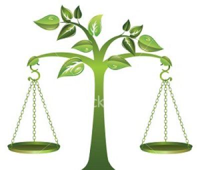 عدالت یا مساوات ؟!!